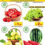 ŞOK 3 Ağustos 2016 Aktüel Ürünler Kataloğu