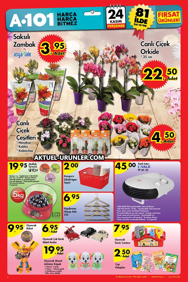A101 Aktüel 24 Kasım 2016 Çiçekler Sayfası