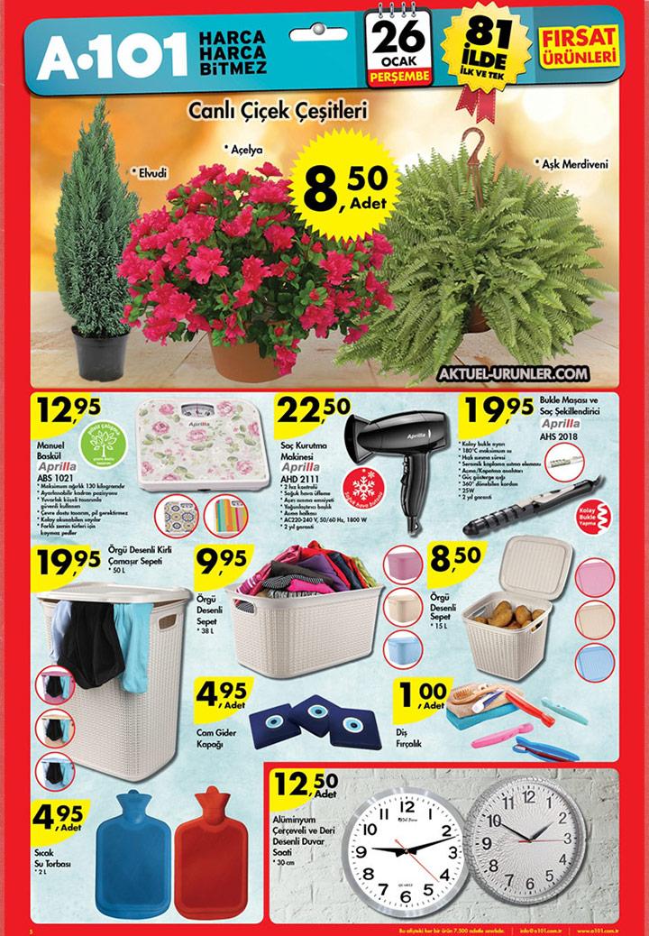 A101 Aktüel 26 Ocak 2017 – Canlı Çiçek Çeşitleri