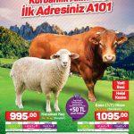 A101 17 Ağustos 2017 Aktüel Ürünler Kataloğu
