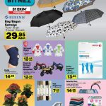 A101 Aldın Aldın Rubenis Şemsiye Çeşitleri Sayfası